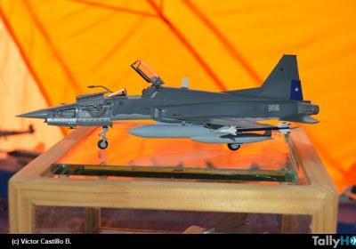 aviacion-militar-expo-pta-arenas09