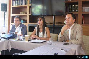 Jaime Fernández  |  Carmen Gloria Serrat  |  Alejandro Lois