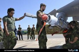 Con avión Gripen combatieron incendio forestal en Suecia