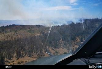 Fuerza Aérea de Chile despliega medios aéreos en incendio forestal de Placilla